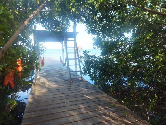 The dock off my hostel, where I saw stingrays swimming past