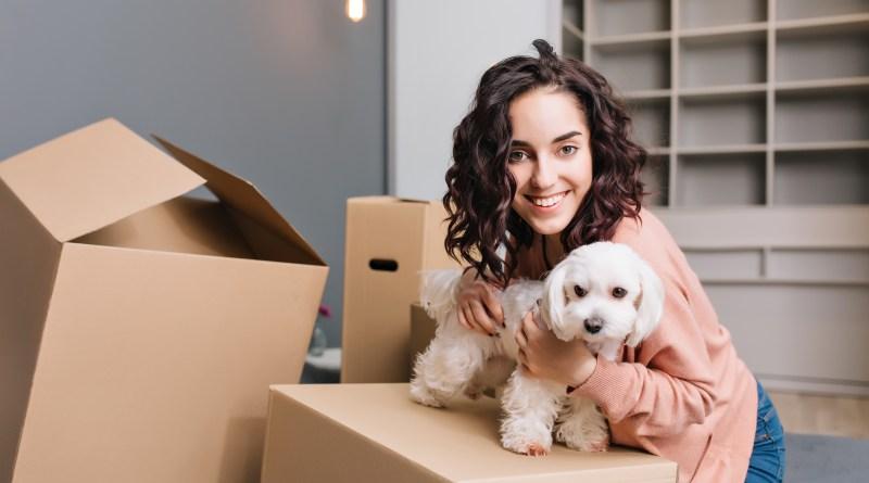 Animais no prédio ou condomínio: quais os limites?
