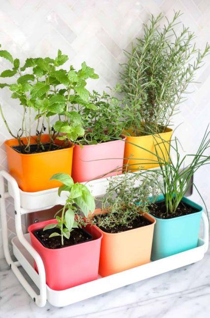 Fonte: https://abeautifulmess.com/make-a-colorful-indoor-herb-garden/?__cf_chl_jschl_tk__=pmd_2de2ff24cc025b42e50a699715f59a28143b7774-1630929956-0-gqNtZGzNAjijcnBszQhO