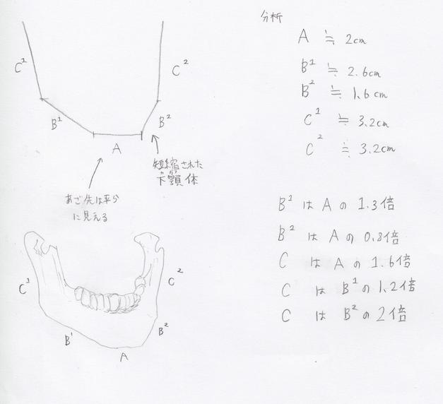 顎横向き2