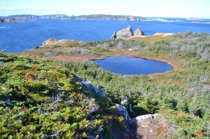 One of many freshwater ponds on Twillingate Island