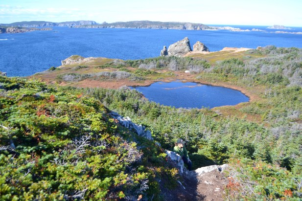 One of many freshwater ponds on Twillingate Island