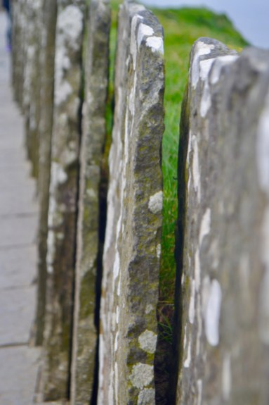 I loved the stone fences