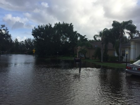 Lots of standing water, but all of the homes that we could see were above water