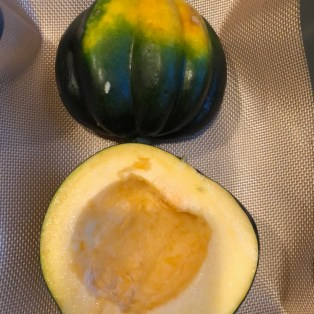 Squash or pumpkin, either works