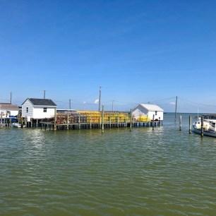 Crab pots in the main harbor