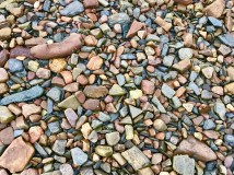 Many colors on the beach