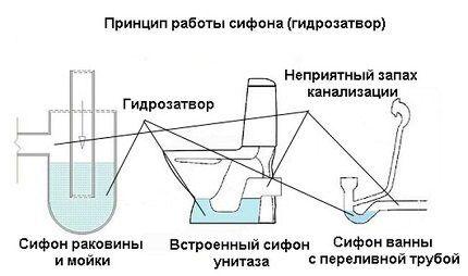Nguyên tắc hoạt động của Siphon
