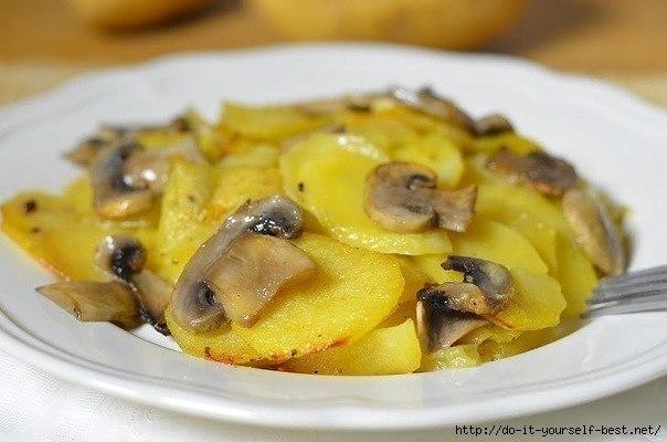 Сущность грибной диеты