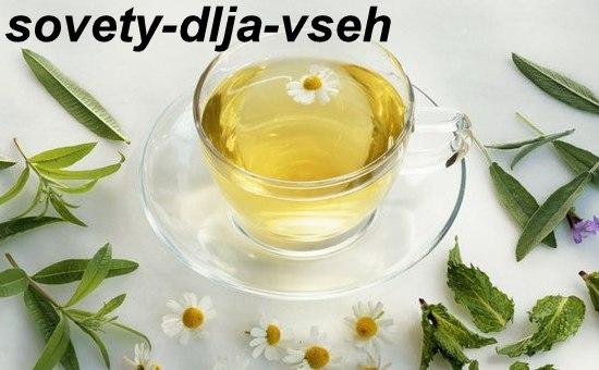 Народные средства для лечения простуды на губах