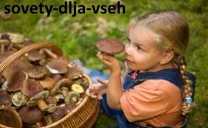 как избежать отравления грибами