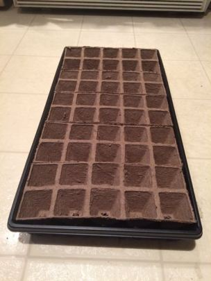 peat pots 5 trays of 10 in black plastic base
