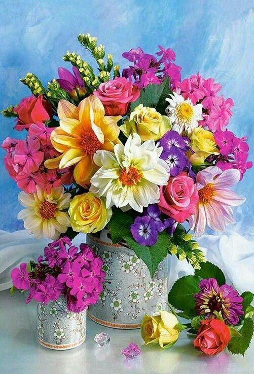 أحلى ورد طبيعي في العالم 2018 صور ورد وزهور Rose Flower Images
