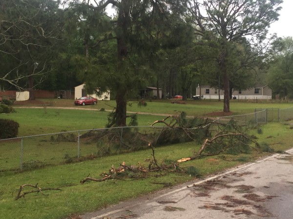 WEATHER Photos From Last Nights Storm Damage