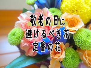 敬老の日に贈る花の定番