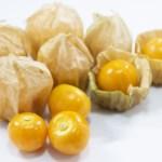 食用ほおずきの種類と味の特徴