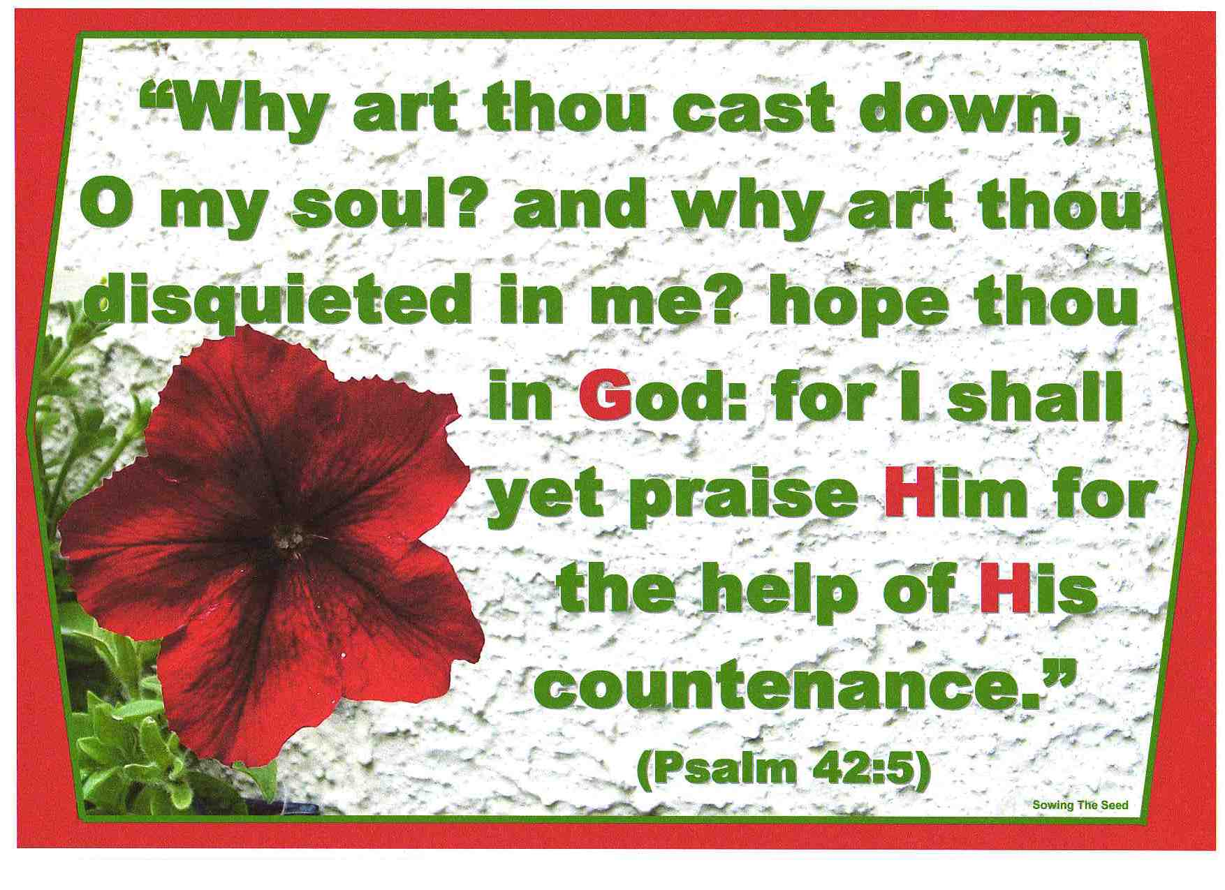 The Help Of His Countenance