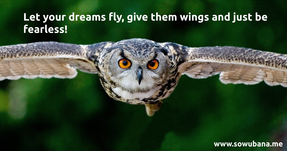 Let your dreams fly, give them wings and just be fearless.