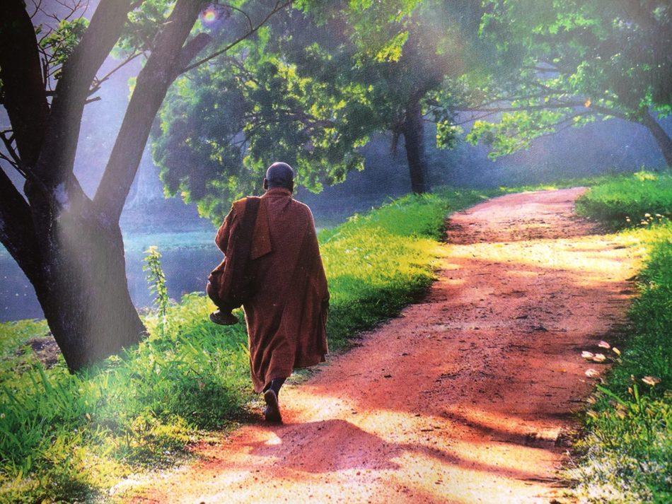 Monk in Sri Lanka