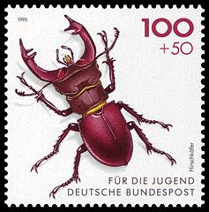 237px-DBP_1993_1668_Hirschkäfer