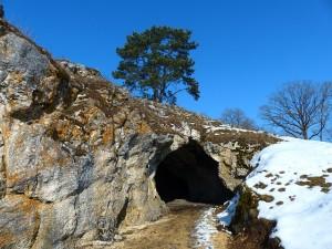 bird-stove-cave-95193_640