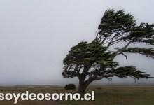 Photo of ONEMI DECLARA ALERTA POR VIENTO EN LAS PROVINCIAS DE LLANQUIHUE, CHILOÉ Y PALENA