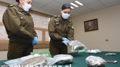 Photo of SEGUNDO HALLAZGO DE DROGAS EN TERMINAL DE BUSES OSORNO