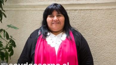 """Photo of DIPUTADA NUYADO POR BAJA DE TARIFAS ELÉCTRICAS PARA CALEFACCIÓN EN OSORNO Y CIUDADES DEL SUR: """"PAN PARA HOY Y HAMBRE PARA MAÑANA"""""""