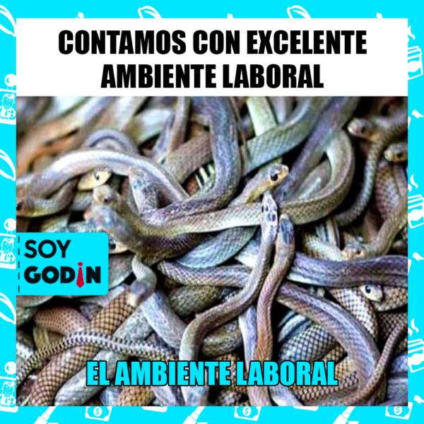 AMBIENTE LABORAL EN MÉXICO