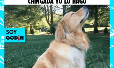 SER IMPACIENTE EN EL TRABAJO