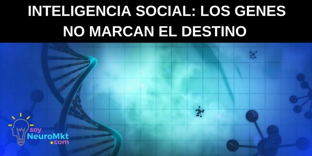 Inteligencia Social, de Daniel Goleman. Notas Sobre el Libro: Los Genes No Marcan El Destino