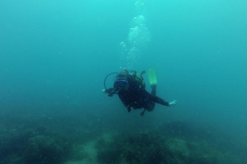 Plongée Algarve