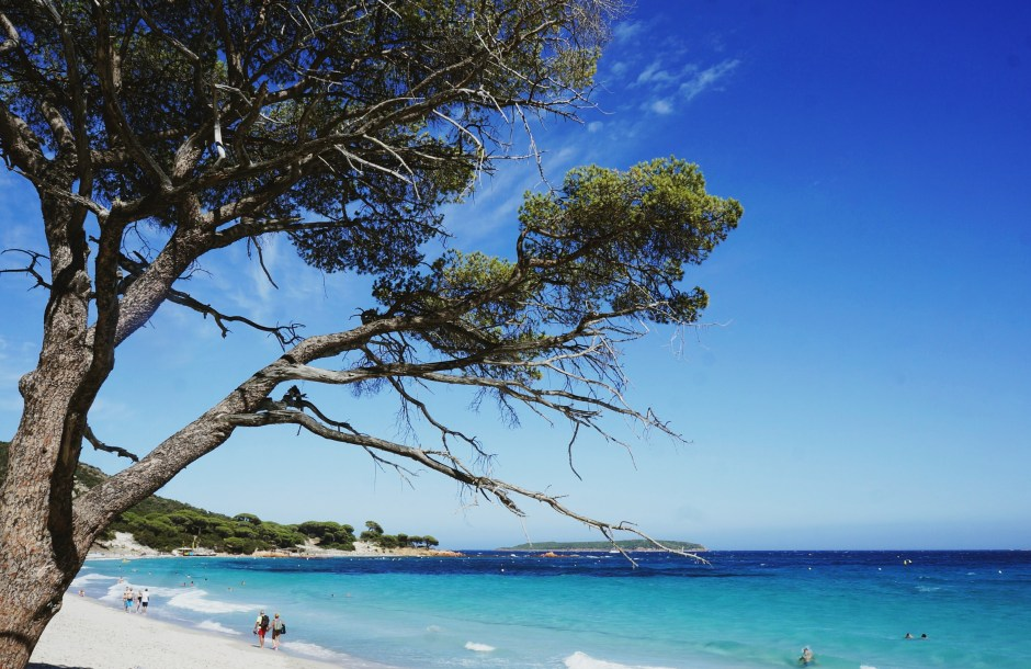 Vacances Corse 1