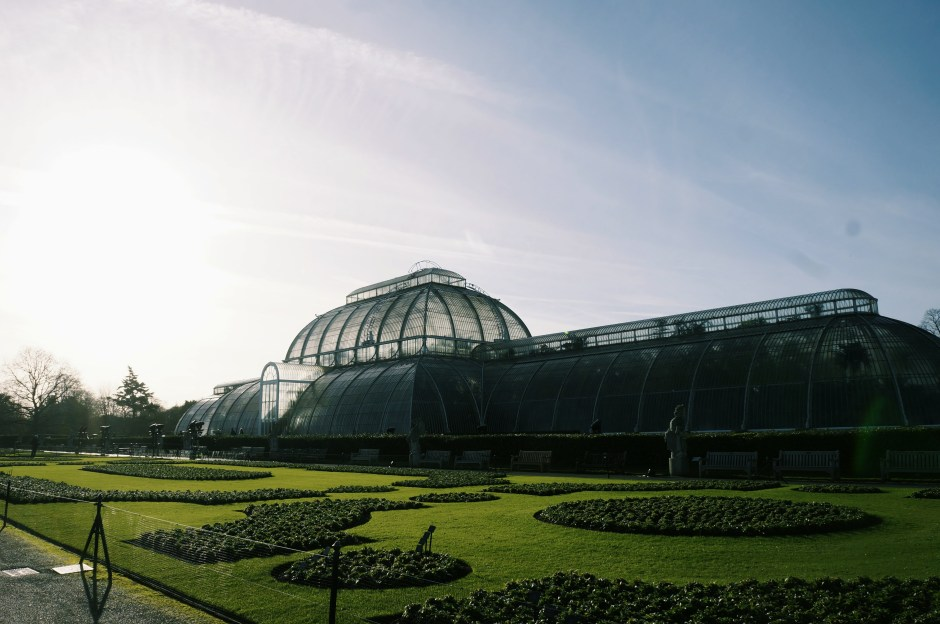 Palm House Kew Garden London Jardin botanique Londres avis 5