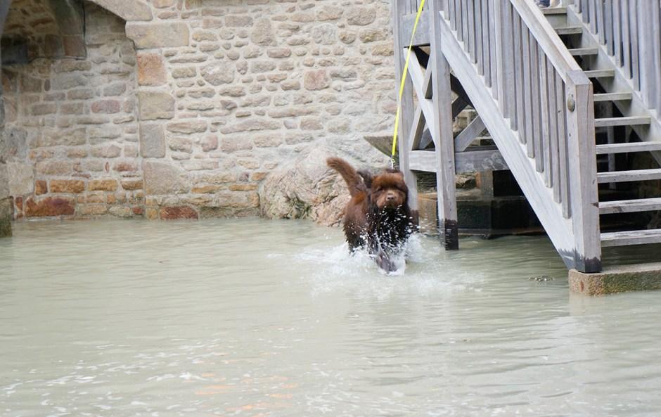 Mont Saint Michel grande maree mere poulard avis sejour ballade 12