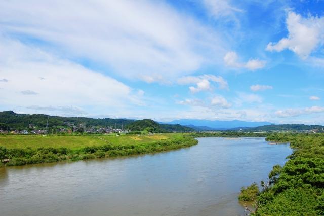 新川和江「わたしを束ねないで」― この美しくて大きな詩が、あなたに届きますように