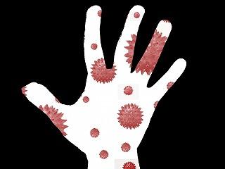 バクテリアと手