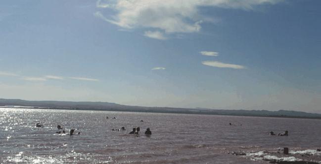 Las Salinas de Torrevieja y sus Barros Curativos