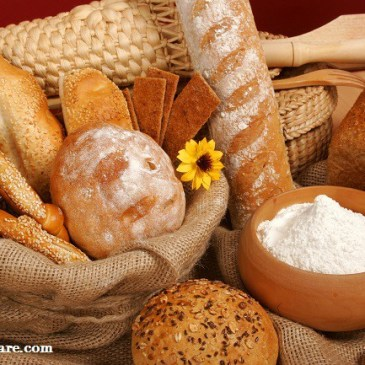 De Verdad Comes el Pan que Crees?