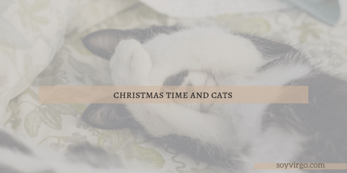 christmas cats by soyvirgo.com | Take Note