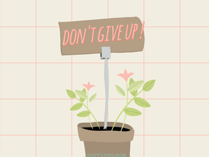 don't give up! quote