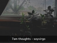 being emo and an adult - 7am thoughts, tumblr, emotional, crybaby - plants - gloomy - soyvirgo.com