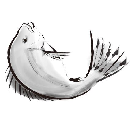 水墨画風の鯛のイラスト