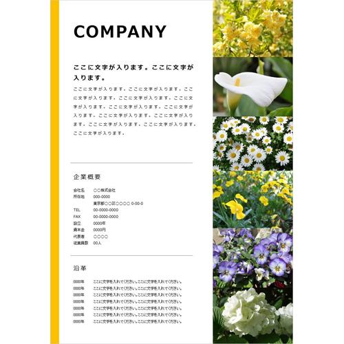 会社案内・パンフレット(写真・イエロー・A4)