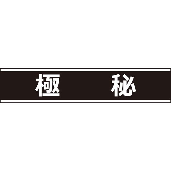 ビジネス 極秘アイコン(カラー)