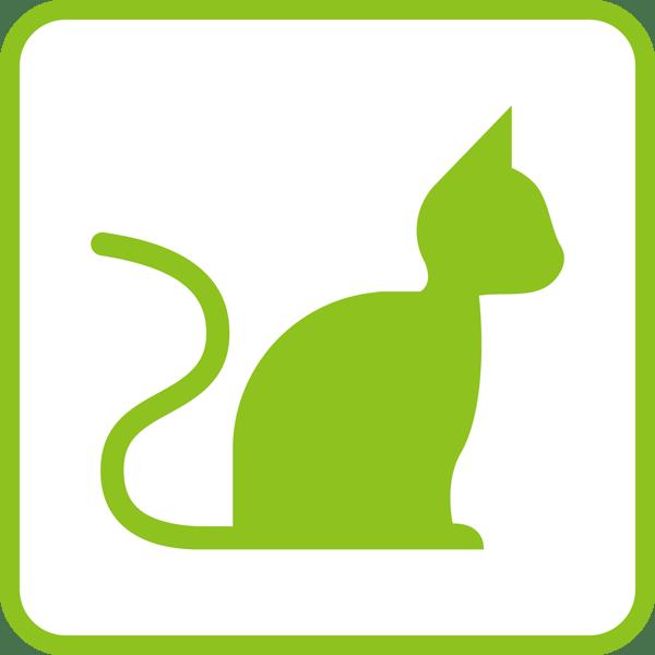 医療 猫アイコン(カラー)