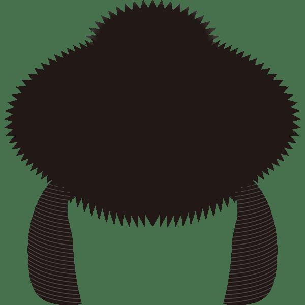 装飾 かつら(百日かつら)(カラー)