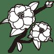 植物 サザンカ(モノクロ)