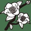 植物 ツバキ(モノクロ)