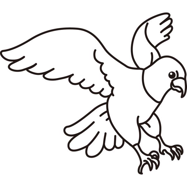 bird_08
